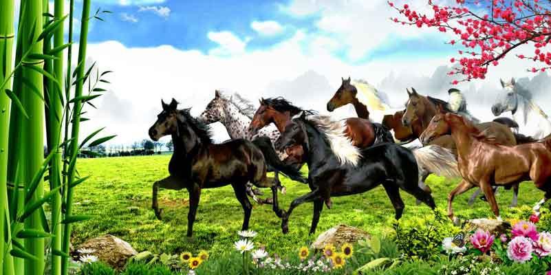 7 Horse In Garden Wallpaper Wallpaperwalaa Com