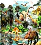 wild-life-wallpaper