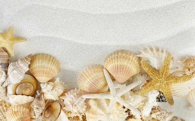 sea-beaches-wallpaper